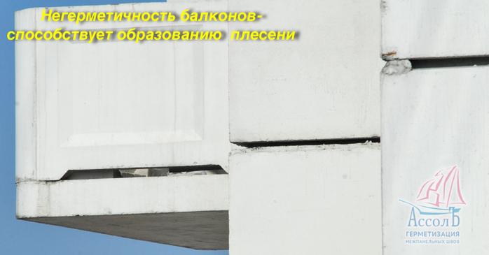 Плесень и грибок поразили ваши стены? устраните их правильно.
